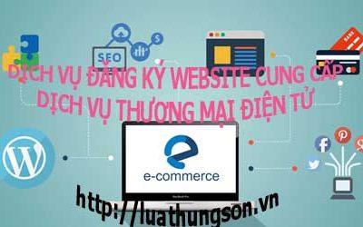 Đăng ký website cung cấp dịch vụ Thương mại điện tử 8TRIP.VN