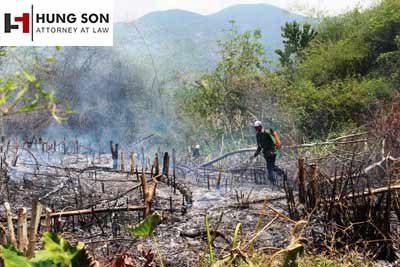 Đốt vườn cháy lan sang hàng xóm thì giải quyết như thế nào?