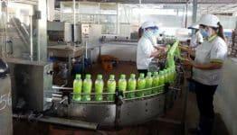 Hướng dẫn đăng ký ngành nghề sản xuất đồ uống mới nhất