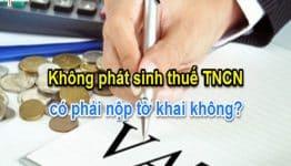 Doanh nghiệp không phát sinh khấu trừ thuế TNCN có cần kê khai và nộp tờ khai thuế TNCN không?