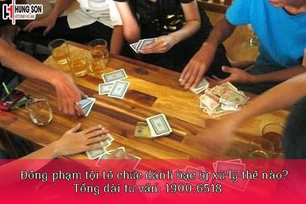đồng phạm tội tổ chức đánh bạc