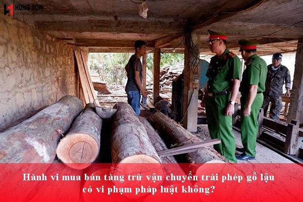 Hành vi mua bán tàng trữ vận chuyển trái phép gỗ lậu có vi phạm pháp luật không?